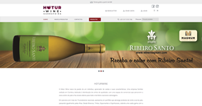 screenshot of the project Hoturwine